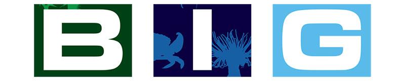 big-project-official-logo-slide